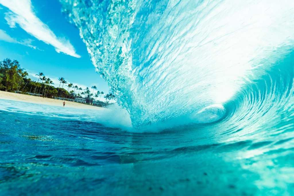 Catch a wave, take the opportunity when it shows!